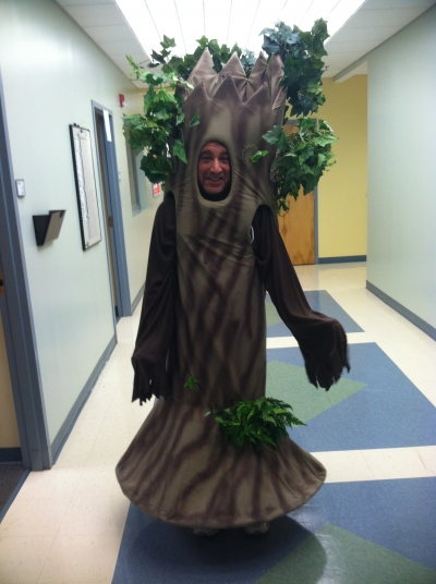 Bob Tree
